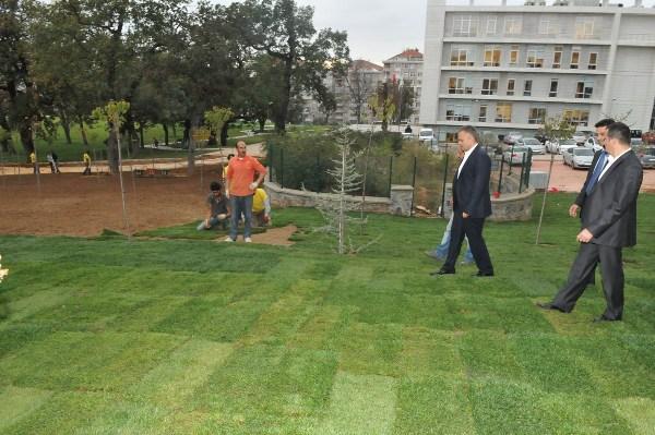 Çekmeköy Kent Parkı Yeşilleniyor