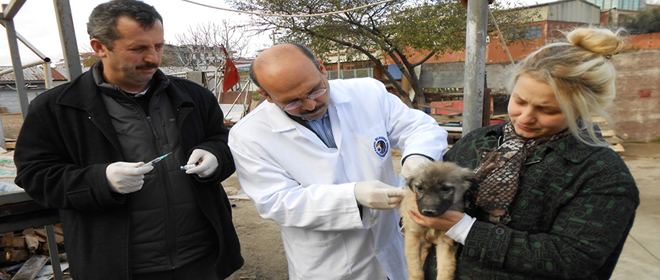 Kartal Belediyesi'nden Ücretsiz Kuduz Aşısı
