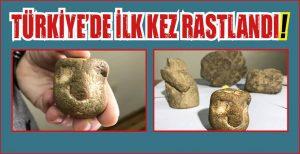 TÜRKİYE'DE İLK KEZ RASTLANDI