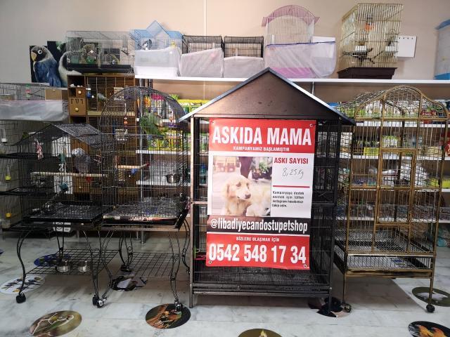 SOKAK HAYVANLARI İÇİN 'ASKIDA MAMA'