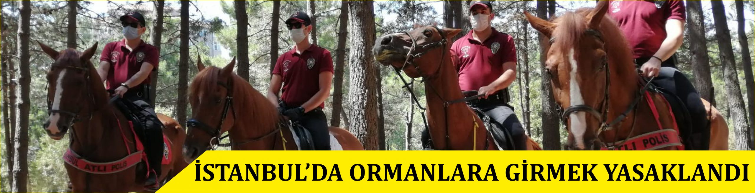 İSTANBUL'DA ORMANLARA GİRMEK YASAKLANDI